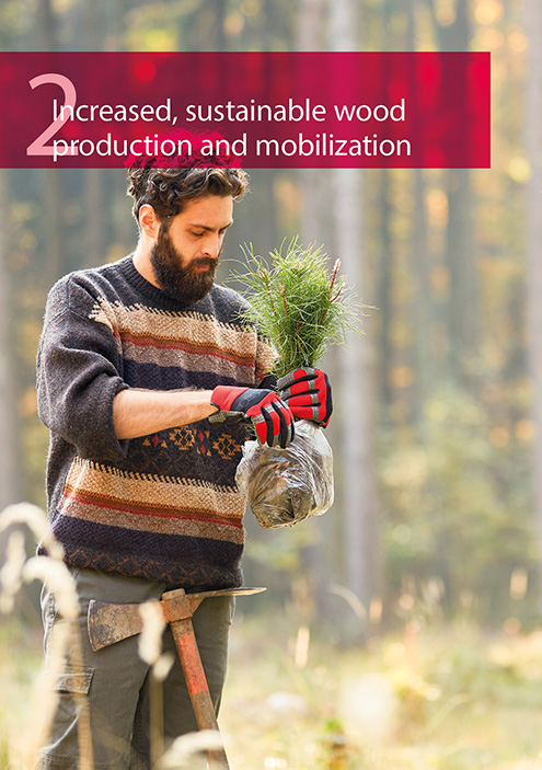 Increased, sustainable wood production and mobilization